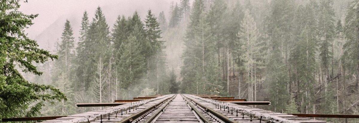 Kiedy można usunąć pasażera z pociągu?